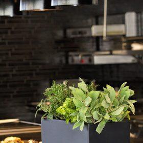 posude-za-cvijece-crne-restoran