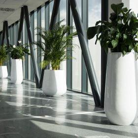 posude-za-cvijece-plasticne-visoke-ukrugle