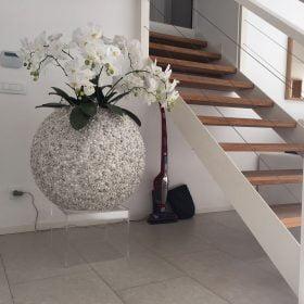 vasi-per-fiori-conchiglia