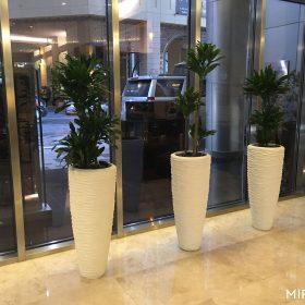 vasi-per-piante-alti