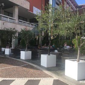 vasi-per-piante-bianchi-cubo