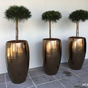 vasi-per-piante-oro