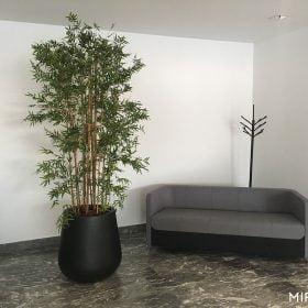 vasi-per-piante-tondo-neri
