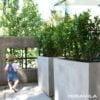 balcony-high-concrete3