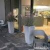 kubis-concrete5