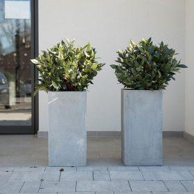 posude-za-cvijece-betonske-terasa